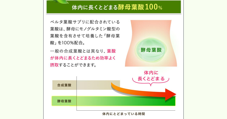 体内に長くとどまる酵母葉酸100%配合