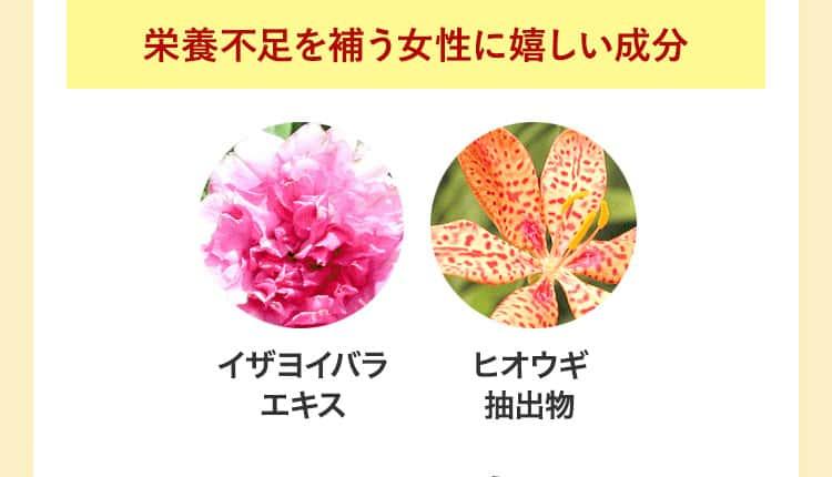 ベルタ育毛剤が人気な6つのポイント