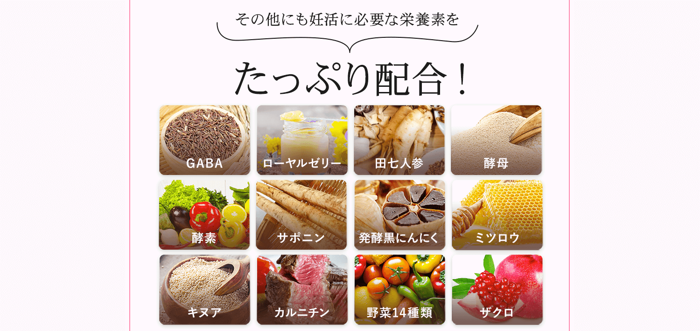 その他にも栄養素をたっぷり配合。GABA、ローヤルゼリー、田七人参、酵母、酵素、サポニン、発酵黒にんにく、ミツロウ、キヌア、カルニチン、野菜14種類、ザクロ