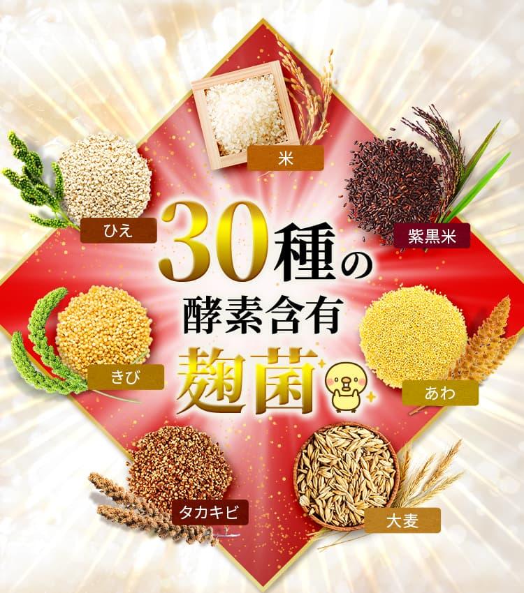 30種の酵素含有麹菌