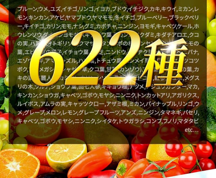 酵素622種